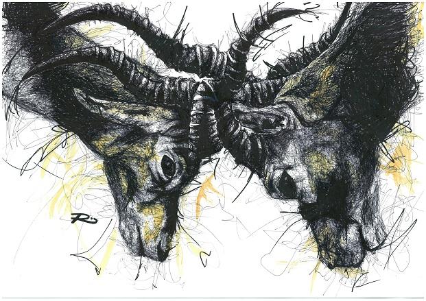Ibex. Framed size 575x450mm
