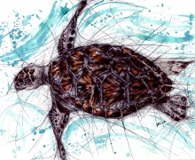 Sea Turtle. Framed size 950x745mm