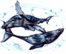 Blue Whales. Framed size 950x745mm